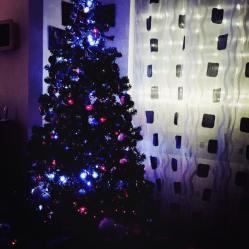 Xmas Tree Cristina Sartoni