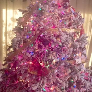 Xmas Tree Sonia Gonzales